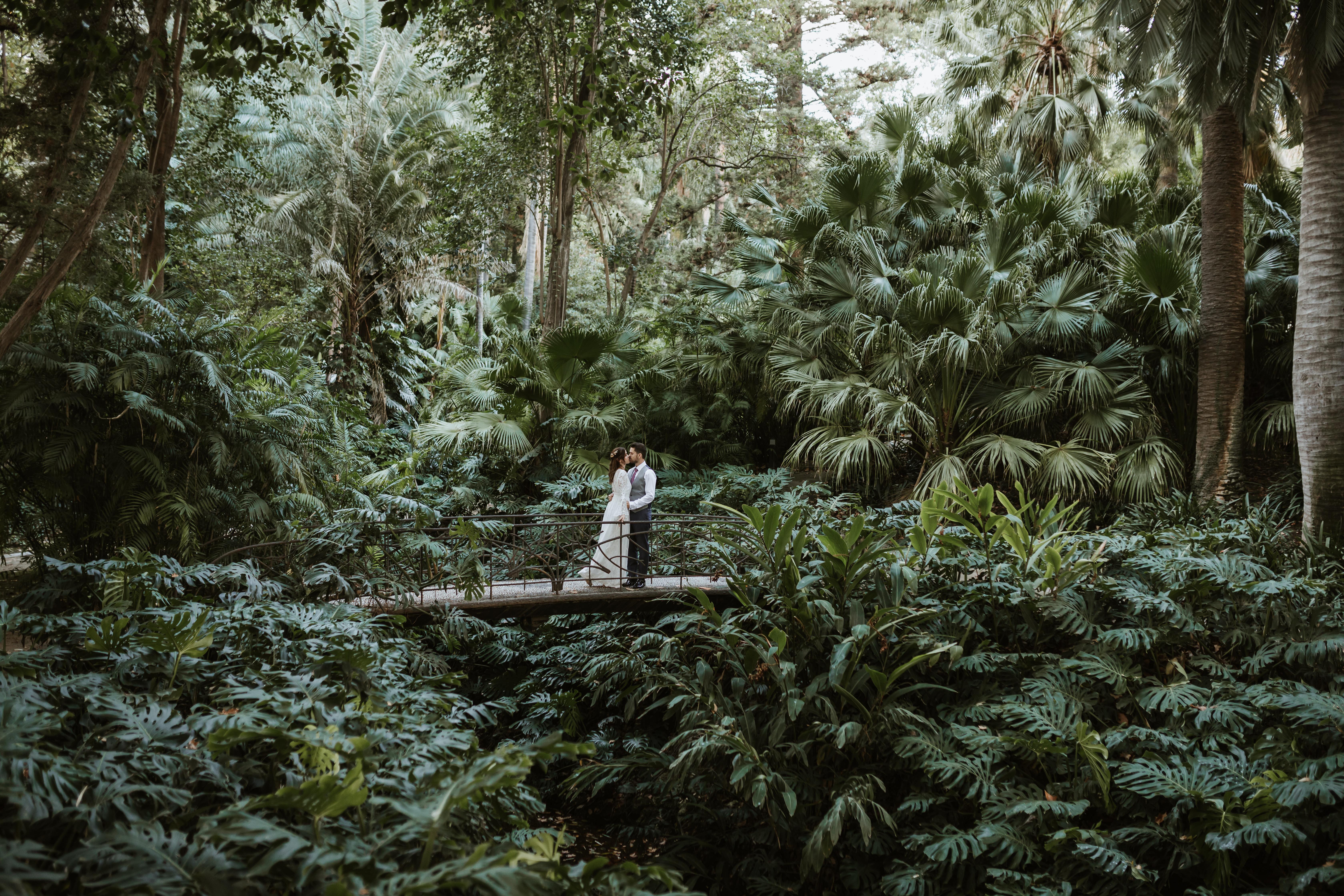Postboda Jardin Botanico 118